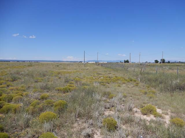 11 Alaska Court, Moriarty, NM 87035 (MLS #954294) :: Silesha & Company