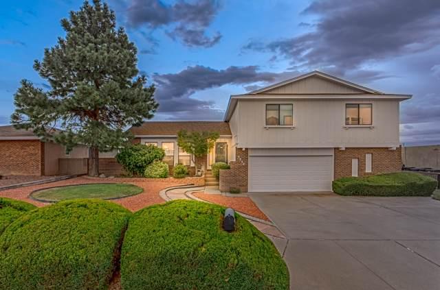 9500 Admiral Lowell Avenue NE, Albuquerque, NM 87111 (MLS #954312) :: Silesha & Company