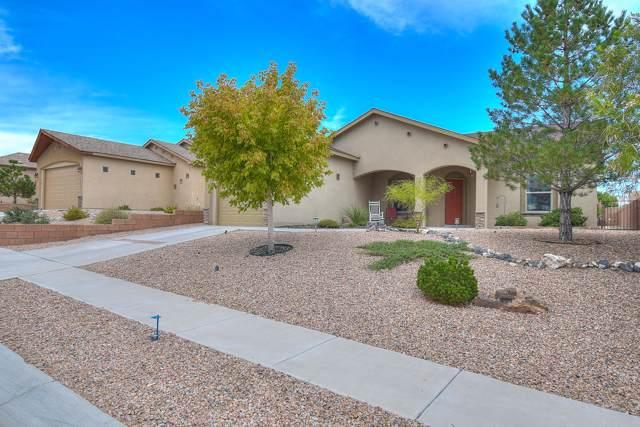 11016 Escensia Street NW, Albuquerque, NM 87114 (MLS #954347) :: Silesha & Company