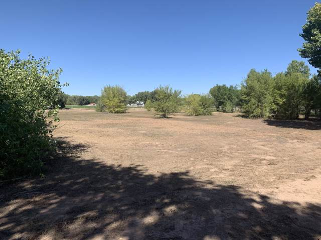 000 Cacahuate Court SW, Albuquerque, NM 87105 (MLS #954444) :: Silesha & Company