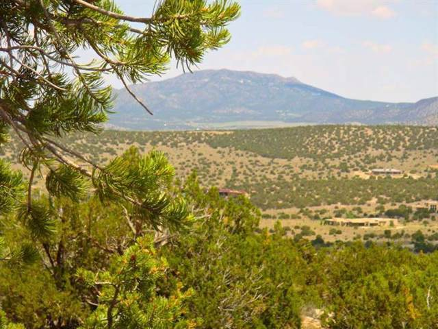 15 Prado Vista, Sandia Park, NM 87047 (MLS #954449) :: Silesha & Company