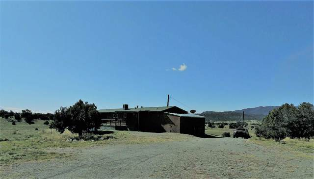 lot 30 Old Thomas Place, Datil, NM 87821 (MLS #954528) :: The Bigelow Team / Red Fox Realty