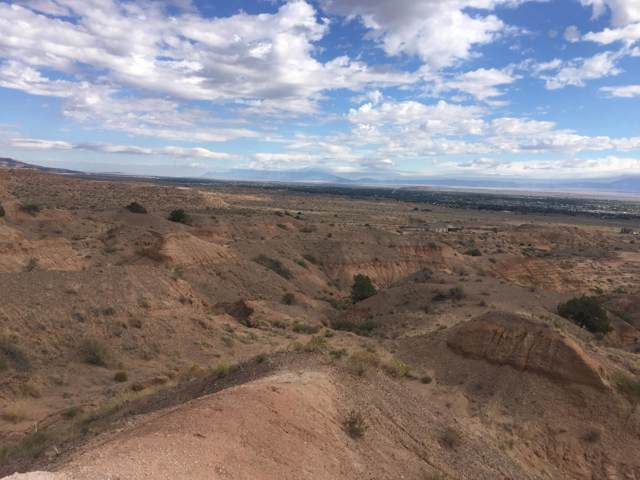 Mesa Road, Belen, NM 87002 (MLS #954552) :: Campbell & Campbell Real Estate Services