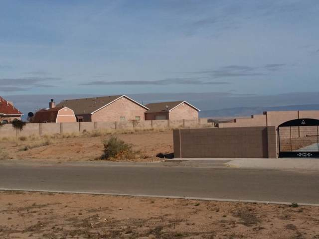1191 Blanca Avenue NW, Los Lunas, NM 87031 (MLS #954670) :: The Buchman Group