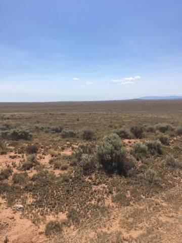 Estancia Ranchettes, Moriarty, NM 87035 (MLS #954799) :: Silesha & Company
