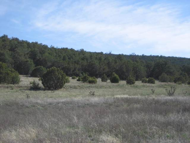 Cannelo, Edgewood, NM 87015 (MLS #954826) :: Campbell & Campbell Real Estate Services