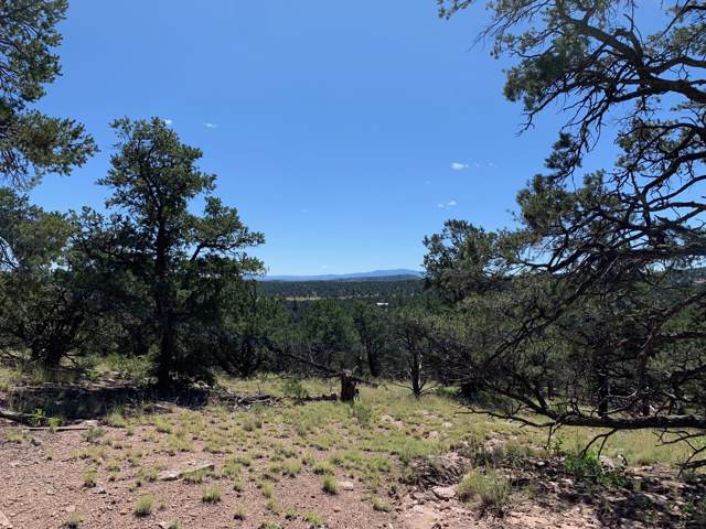 65 Homestead Subdivision, Datil, NM 87821 (MLS #954953) :: Berkshire Hathaway HomeServices Santa Fe Real Estate