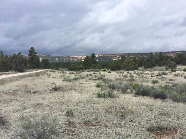 Lot 2 East Elk Road, Ramah, NM 87321 (MLS #954958) :: Silesha & Company