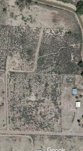 9.503Acres, Lemitar, NM 87823 (MLS #955041) :: Campbell & Campbell Real Estate Services