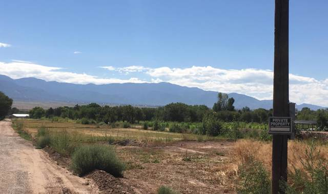 Guadalupe Lane, Corrales, NM 87048 (MLS #955073) :: Campbell & Campbell Real Estate Services