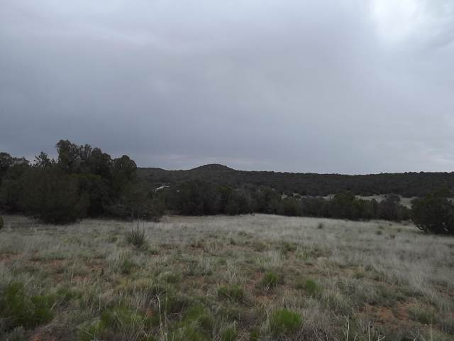 Camino Del Norte, Tajique, NM 87016 (MLS #955158) :: Berkshire Hathaway HomeServices Santa Fe Real Estate