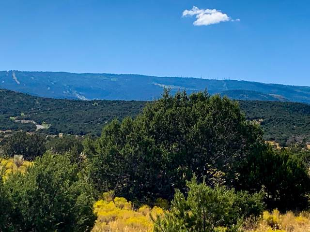 4 Los Cedros, Sandia Park, NM 87047 (MLS #955162) :: Campbell & Campbell Real Estate Services