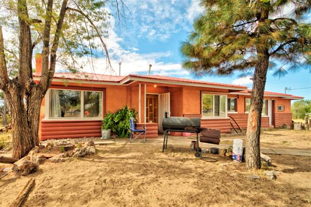 60 State Hwy 126, Cuba, NM 87013 (MLS #955298) :: Campbell & Campbell Real Estate Services