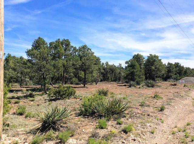 43 Jesse James Road, Edgewood, NM 87015 (MLS #955339) :: Campbell & Campbell Real Estate Services
