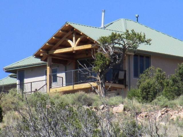 10 Fawn Circle, Datil, NM 87821 (MLS #955345) :: The Buchman Group