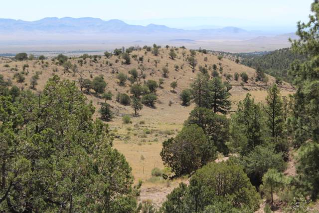 Rosedale Mine, Magdalena, NM 87825 (MLS #955444) :: Campbell & Campbell Real Estate Services