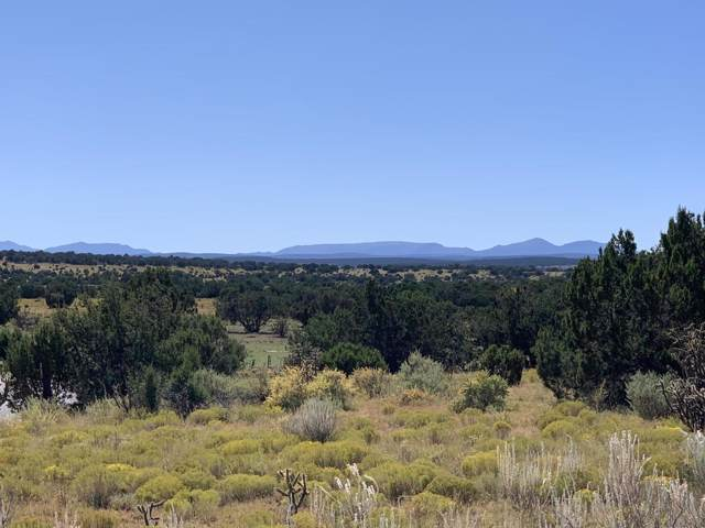 Lexco, Moriarty, NM 87035 (MLS #955509) :: Silesha & Company