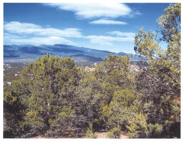 Kimberly Lane, Tijeras, NM 87059 (MLS #955587) :: The Buchman Group