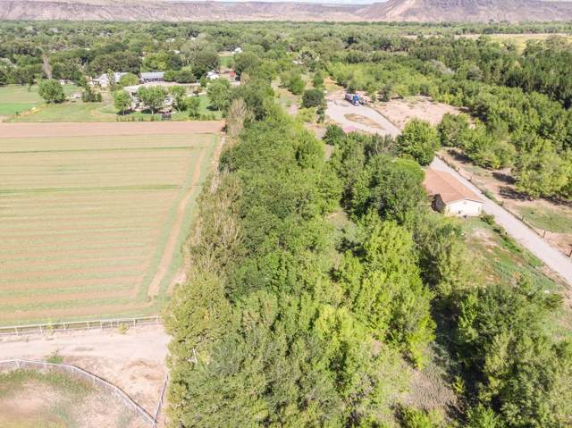 0 Bowersville Road, Algodones, NM 87001 (MLS #955608) :: Campbell & Campbell Real Estate Services
