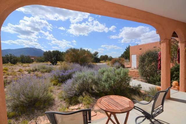 24 Camino De La Questa Del Aire, Placitas, NM 87043 (MLS #955884) :: Campbell & Campbell Real Estate Services