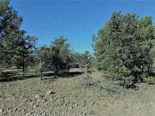 lot 54 Tee Pee Ranch, Datil, NM 87821 (MLS #955914) :: The Buchman Group