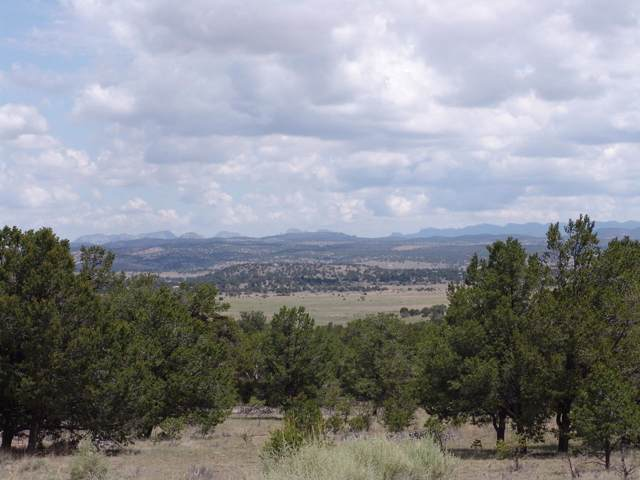 215 High Plains Drive, Datil, NM 87821 (MLS #955915) :: The Bigelow Team / Red Fox Realty