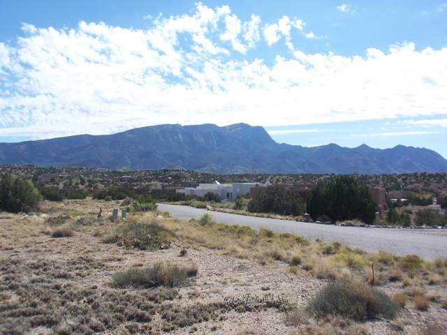 Second Mesa Drive, Placitas, NM 87043 (MLS #955923) :: Campbell & Campbell Real Estate Services