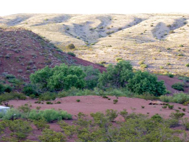 4 Back Country Byway, Socorro, NM 87801 (MLS #955948) :: The Buchman Group
