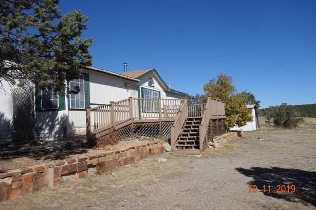 90 Ballenger Ranch Road, Edgewood, NM 87015 (MLS #955971) :: Silesha & Company