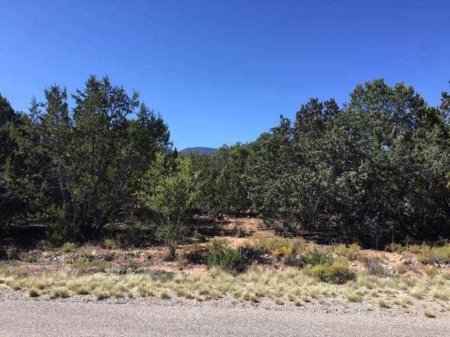 27 Chaco Loop, Sandia Park, NM 87047 (MLS #955987) :: Campbell & Campbell Real Estate Services