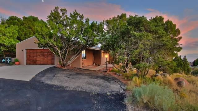617 Cedar Hill Road NE, Albuquerque, NM 87122 (MLS #956012) :: Silesha & Company