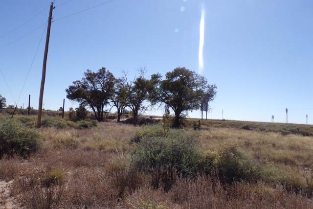 Abrahames Road, Moriarty, NM 87035 (MLS #956022) :: The Bigelow Team / Red Fox Realty
