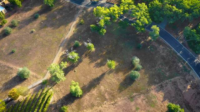 809 Camino Vista Rio, Bernalillo, NM 87004 (MLS #956055) :: Campbell & Campbell Real Estate Services
