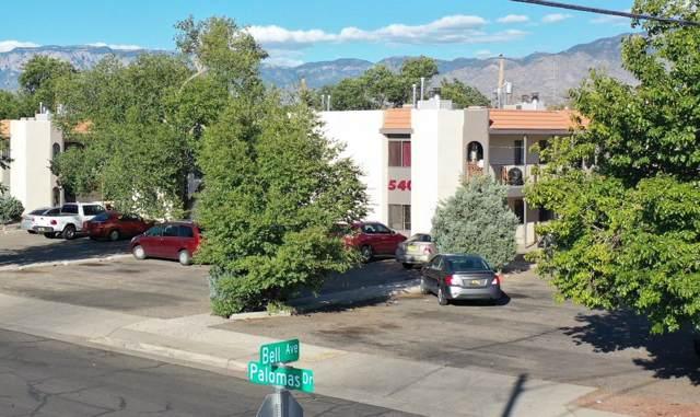 544 Palomas SE, Albuquerque, NM 87108 (MLS #956069) :: Campbell & Campbell Real Estate Services