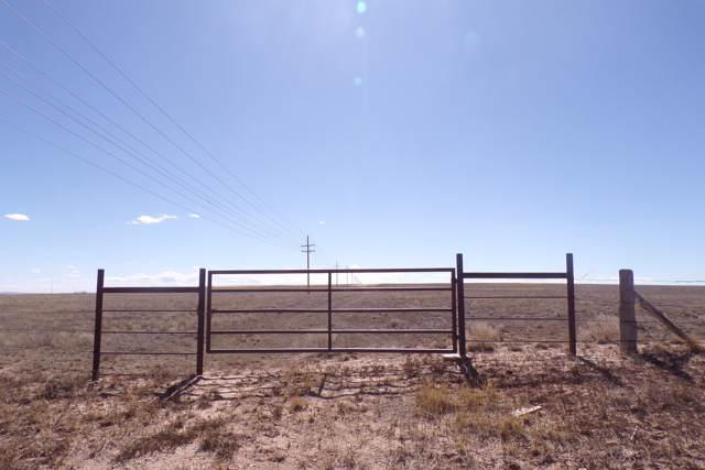 Myers Road, Estancia, NM 87016 (MLS #956072) :: Campbell & Campbell Real Estate Services