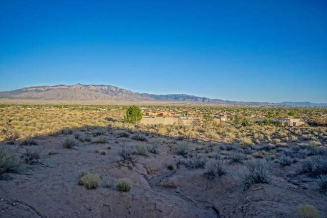 953 Camino Sin Pasada Road, Corrales, NM 87048 (MLS #956073) :: Campbell & Campbell Real Estate Services