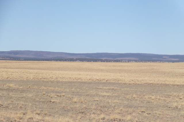 Myers Road, Estancia, NM 87016 (MLS #956088) :: Campbell & Campbell Real Estate Services