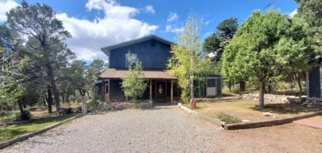 216 Raven Road, Tijeras, NM 87059 (MLS #956094) :: Campbell & Campbell Real Estate Services