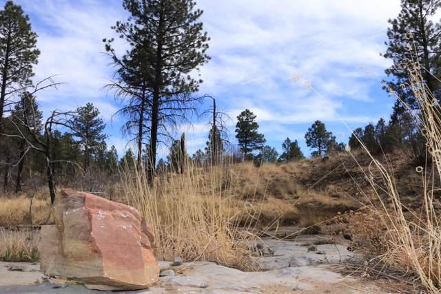 0000 Water Canyon Road, Manzano, NM 87016 (MLS #956113) :: Silesha & Company