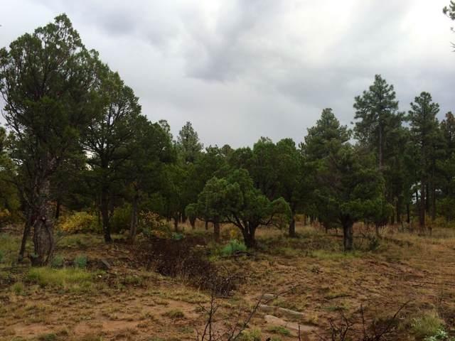 000 Water Canyon Road, Manzano, NM 87016 (MLS #956116) :: Silesha & Company