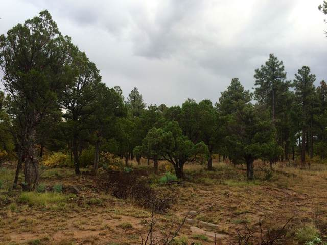 Water Canyon Lots C & D Road, Manzano, NM 87016 (MLS #956119) :: Silesha & Company