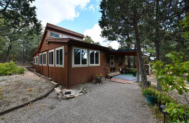 15 Whippoorwill Lane NE, Tijeras, NM 87059 (MLS #956435) :: Campbell & Campbell Real Estate Services