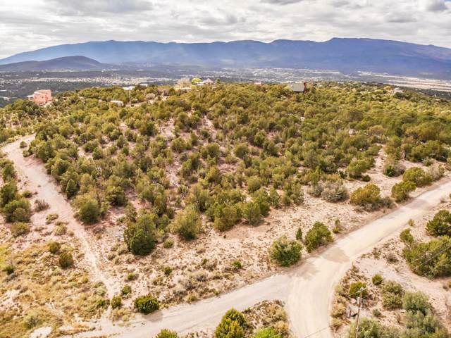 6 Angeles Vista Drive, Sandia Park, NM 87047 (MLS #956499) :: Campbell & Campbell Real Estate Services