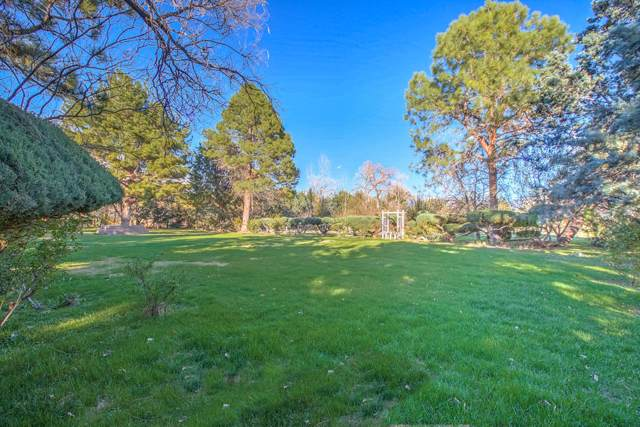 8633 Rio Grande Boulevard NW, Los Ranchos, NM 87114 (MLS #956503) :: The Bigelow Team / Red Fox Realty