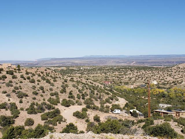 Debajo De Ojo, Placitas, NM 87043 (MLS #956514) :: The Buchman Group