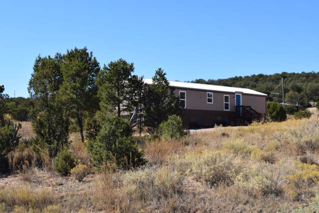 13 Red Diamond, Edgewood, NM 87015 (MLS #956786) :: Campbell & Campbell Real Estate Services