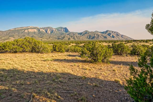 Morning Star Court, Placitas, NM 87043 (MLS #956787) :: Campbell & Campbell Real Estate Services