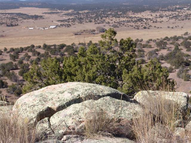 Greens Gap Road, Datil, NM 87821 (MLS #956798) :: Campbell & Campbell Real Estate Services