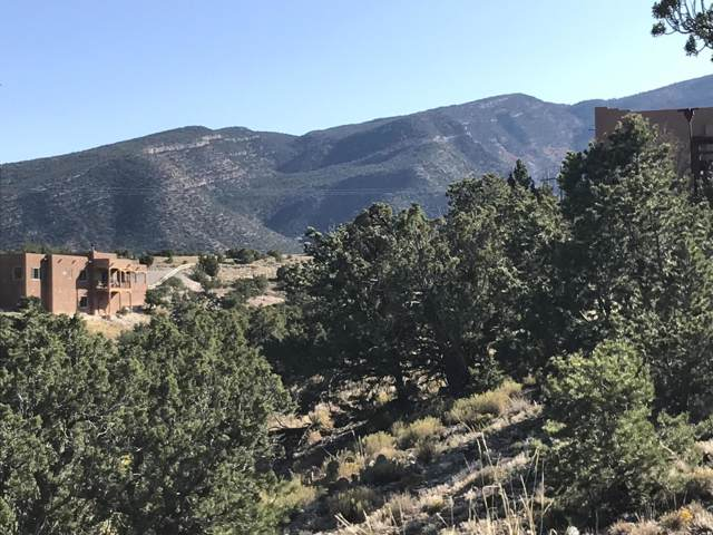 14 Evergreen Drive, Placitas, NM 87043 (MLS #956859) :: Campbell & Campbell Real Estate Services