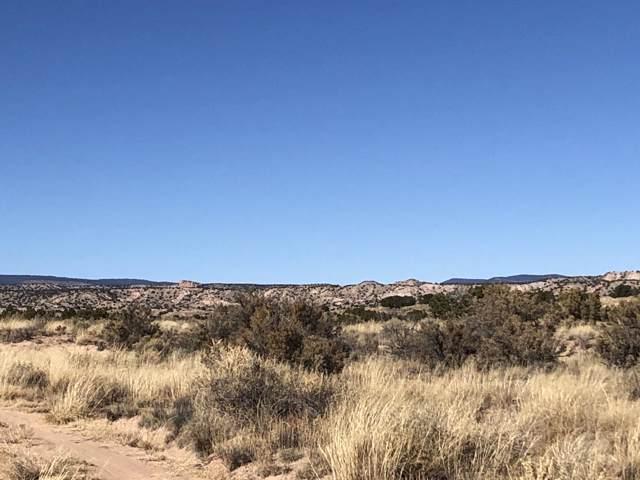Vacant Land, Abiquiu, NM 87510 (MLS #957035) :: Silesha & Company